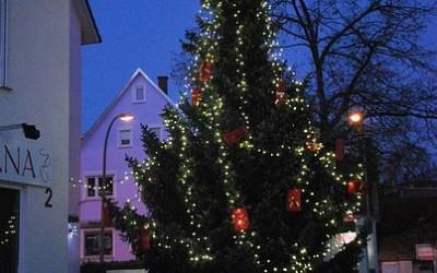 Der schönste Weihnachtsbaum stand in Birkach